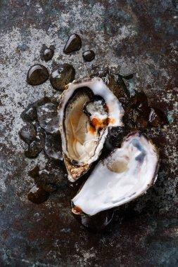 Open Oyster heart shape