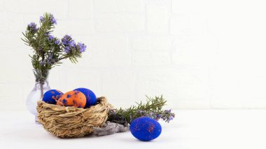 A nest with with classic blue and orange speckled easter eggs, a brunch of rosemary flowers i layng on the table on a withe wall background. Concept of Easter holyday and spring break