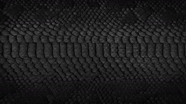 Hadí kůže pozadí. Zblízka. 4 k vysoce kvalitní záběry.