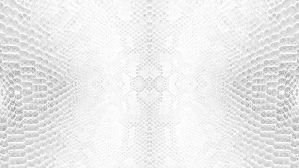 abstract parallax background texture of white snake skin python pattern stylish fashion animation