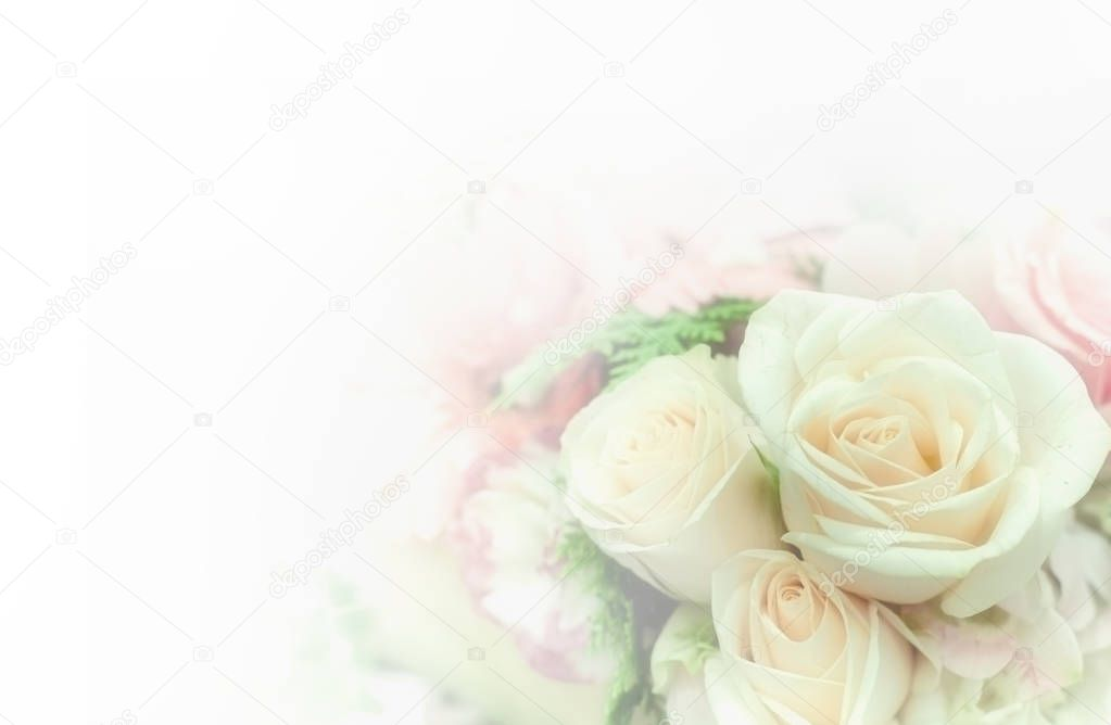 Beautiful flower background / wallpaper made with color filters