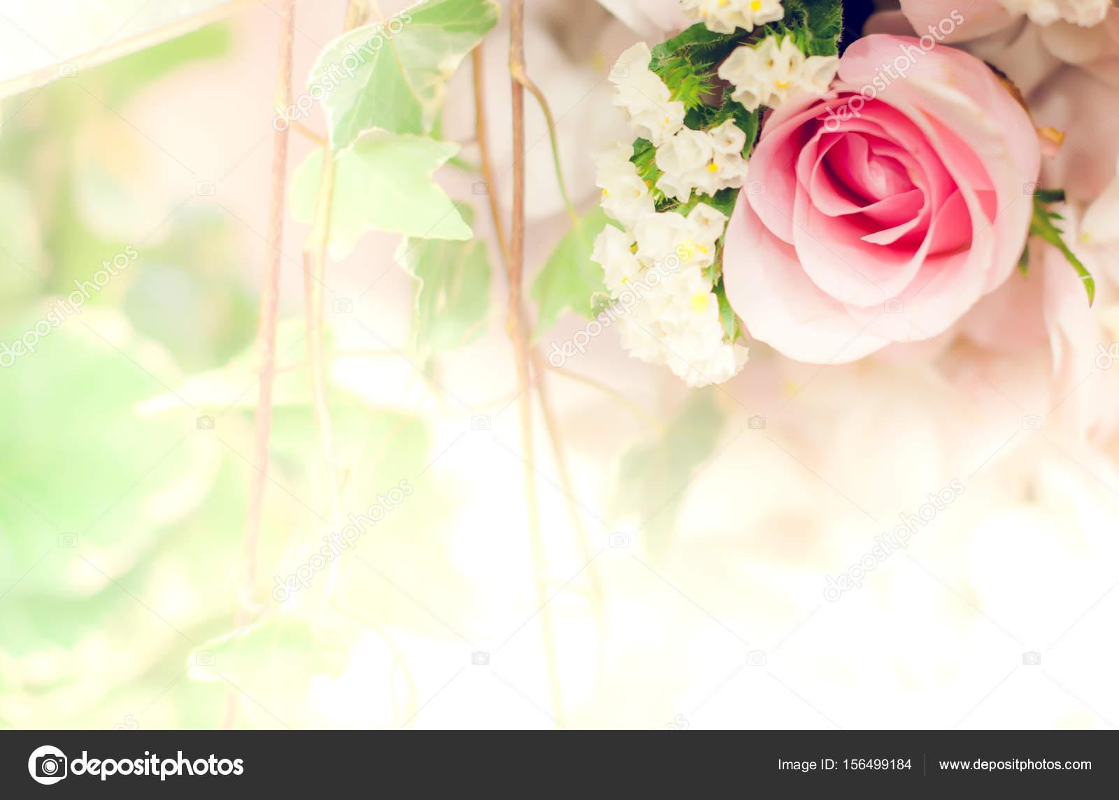 Fondos De Pantalla De Flores Hermosas: Fondo De Flor Hermosa Fondo De Pantalla Hecha Con Filtros