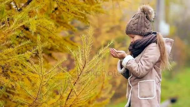 Portrét krásnou dívku pozadí žluté stromy na podzim