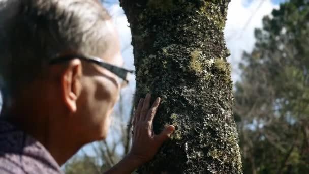 Ázsiai idősebb férfiak megérintik fa szelíd a természet hátterét. A világ környezetének megmentéséről alkotott elképzelések.