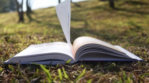 Könyv lapjai széllel a füvön, napsütéssel a tavaszi kertben.