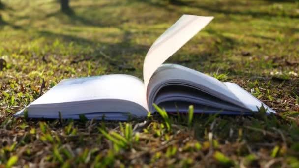 Stránky knihy se obracejí větrem po trávě, slunce svítí na jarní zahradě.