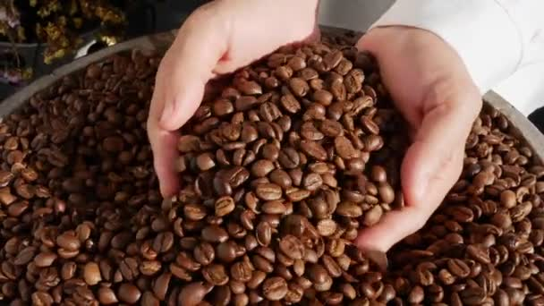 Close up of Hands pouring coffee beans to a pile of coffee beans.