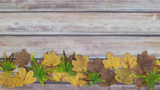 Green, yellow and brown leaves moving on the bottom of wooden table - Stop motion