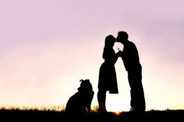 A silhouette of a happy young married couple in love, kissing at sunset, next  to their pet dog outside on a summer night.