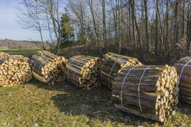 Sawn, split wood, trunks lie in the meadow.