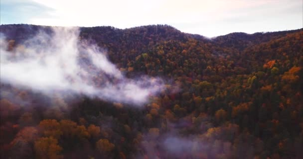 Aerial view of Nature Reserve mountains covered with forest and fog. Russia