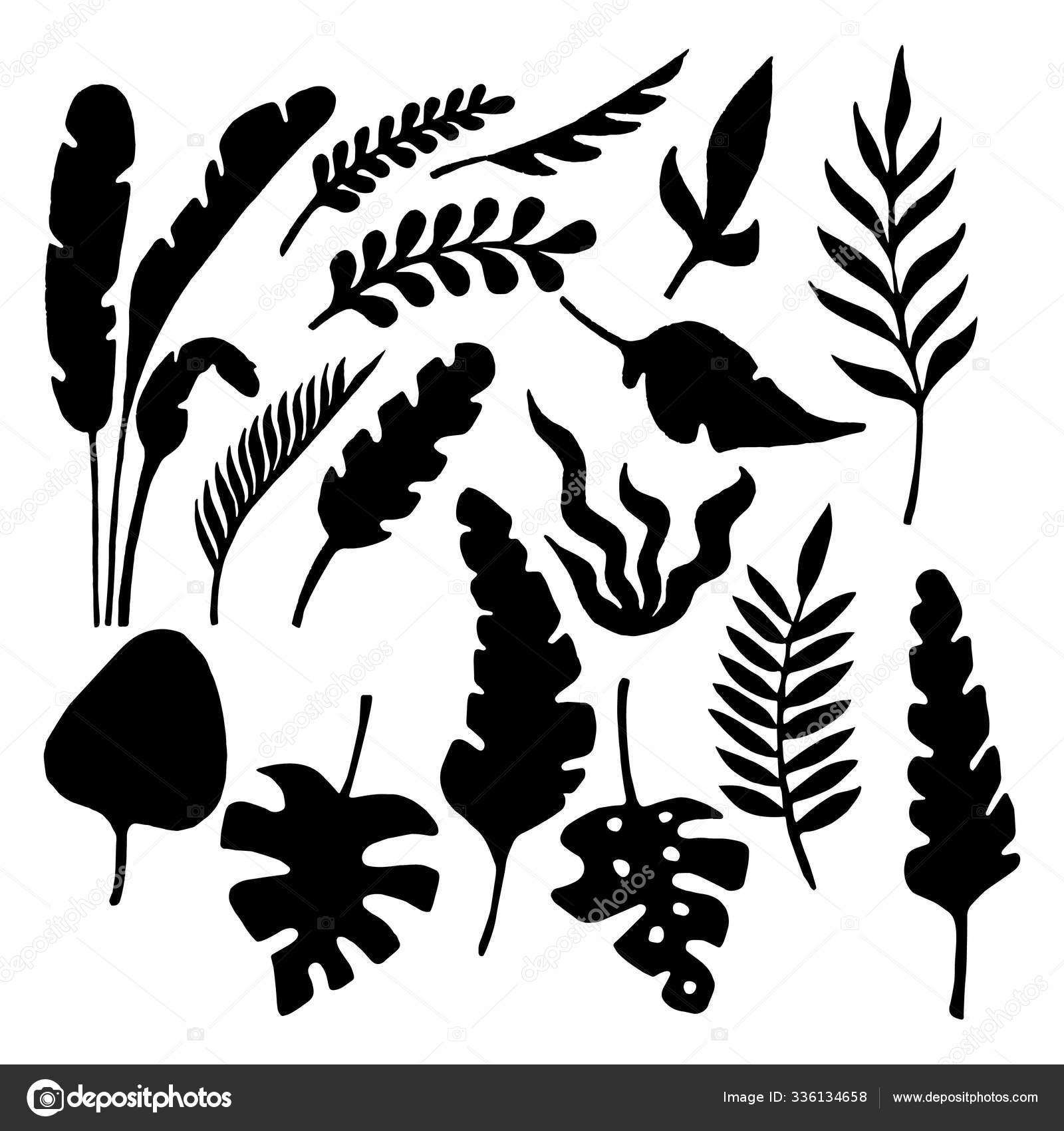 Set Black Jungle Leaves Jungle Leaves Wallpaper Fabric Prints Cards Stock Photo C Ozinge 336134658 Download 23,039 jungle leaves free vectors. https depositphotos com 336134658 stock photo set black jungle leaves jungle html