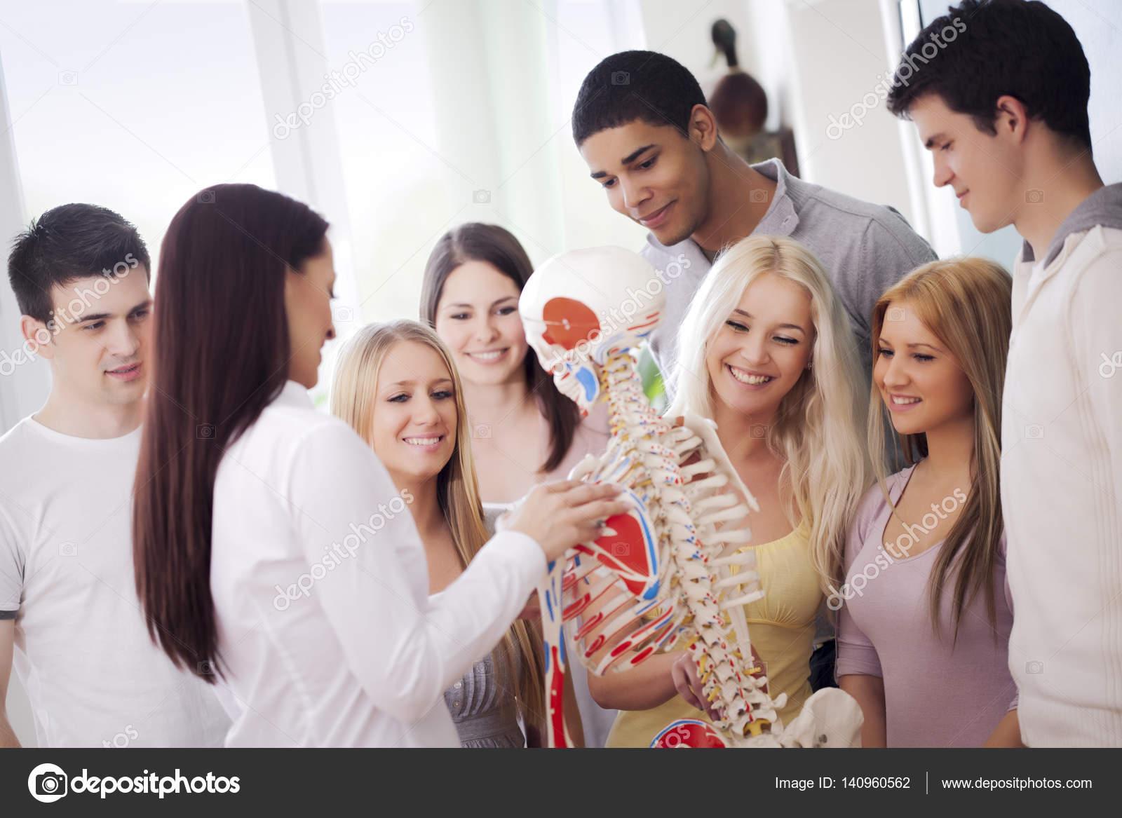 Students in Anatomy Class — Stock Photo © luminastock #140960562