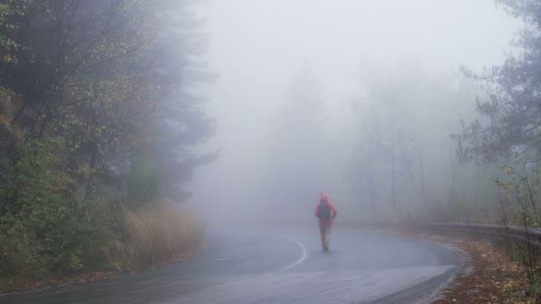 Ztracený turista bloudí ve strašidelném, zamlženém lese v deštivém dni