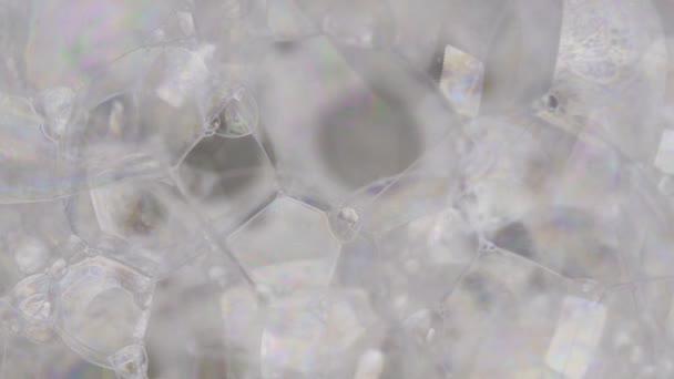 Makro, kémiai reakció Buborékok létrehozása tükröző színek