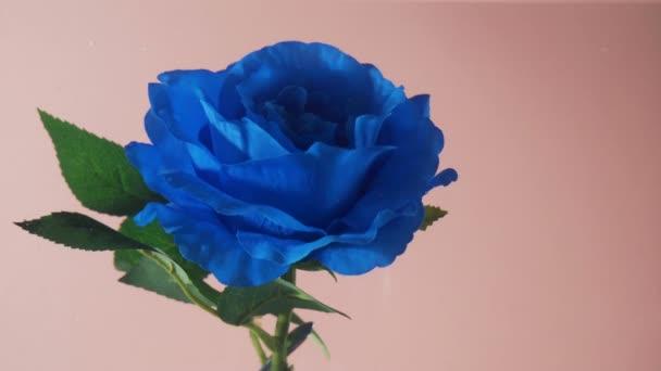 Modrá umělá růže květiny pod vodou pohybující