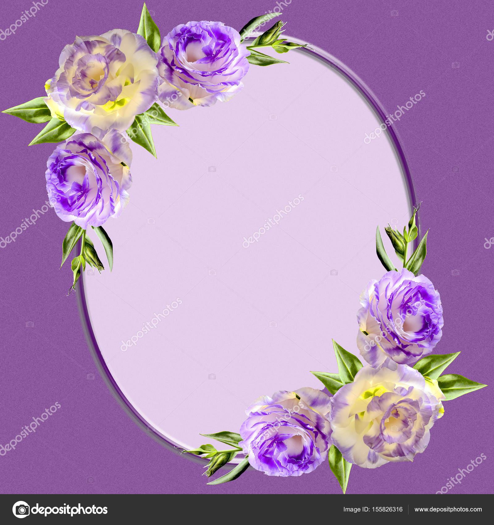 Vintage marco oval decorado con flores de color púrpura eustoma ...