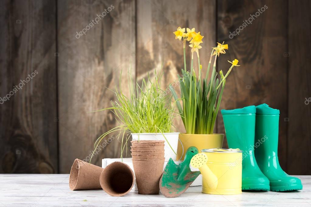 Garden tolls and spring seedling