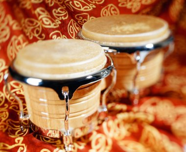 Bongo drum, music instrument