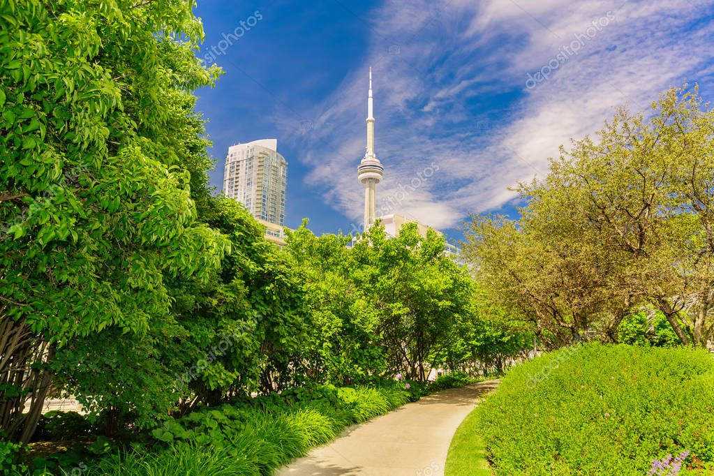 amazing, inviting view of Toronto down town area music garden park with modern stylish building and CN tower in background