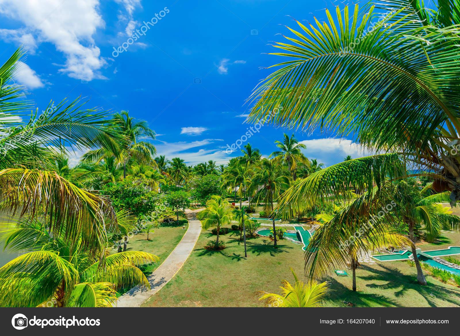 hermoso invitando a ver paisaje jardn tropical en cayo Coco Cuba