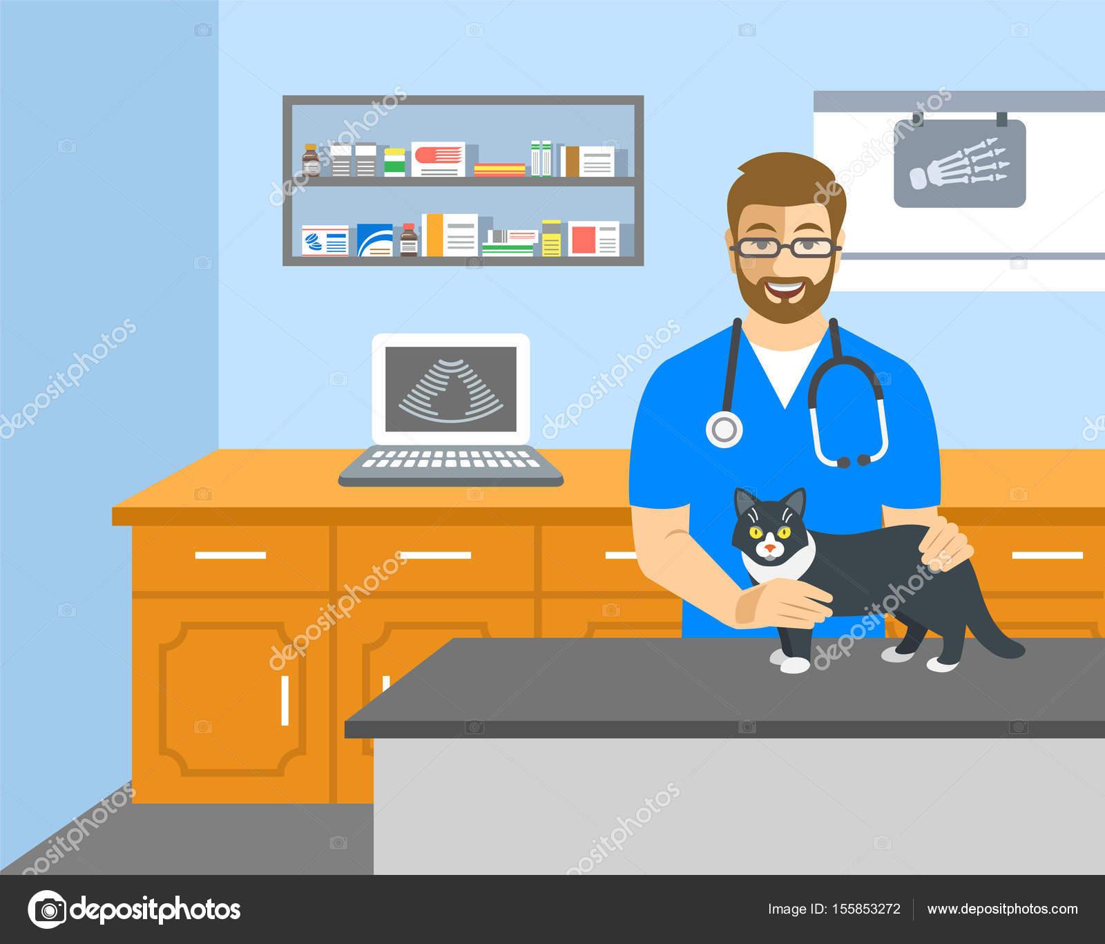 Médico veterinario tiene gato en mesa de examen — Archivo Imágenes ...
