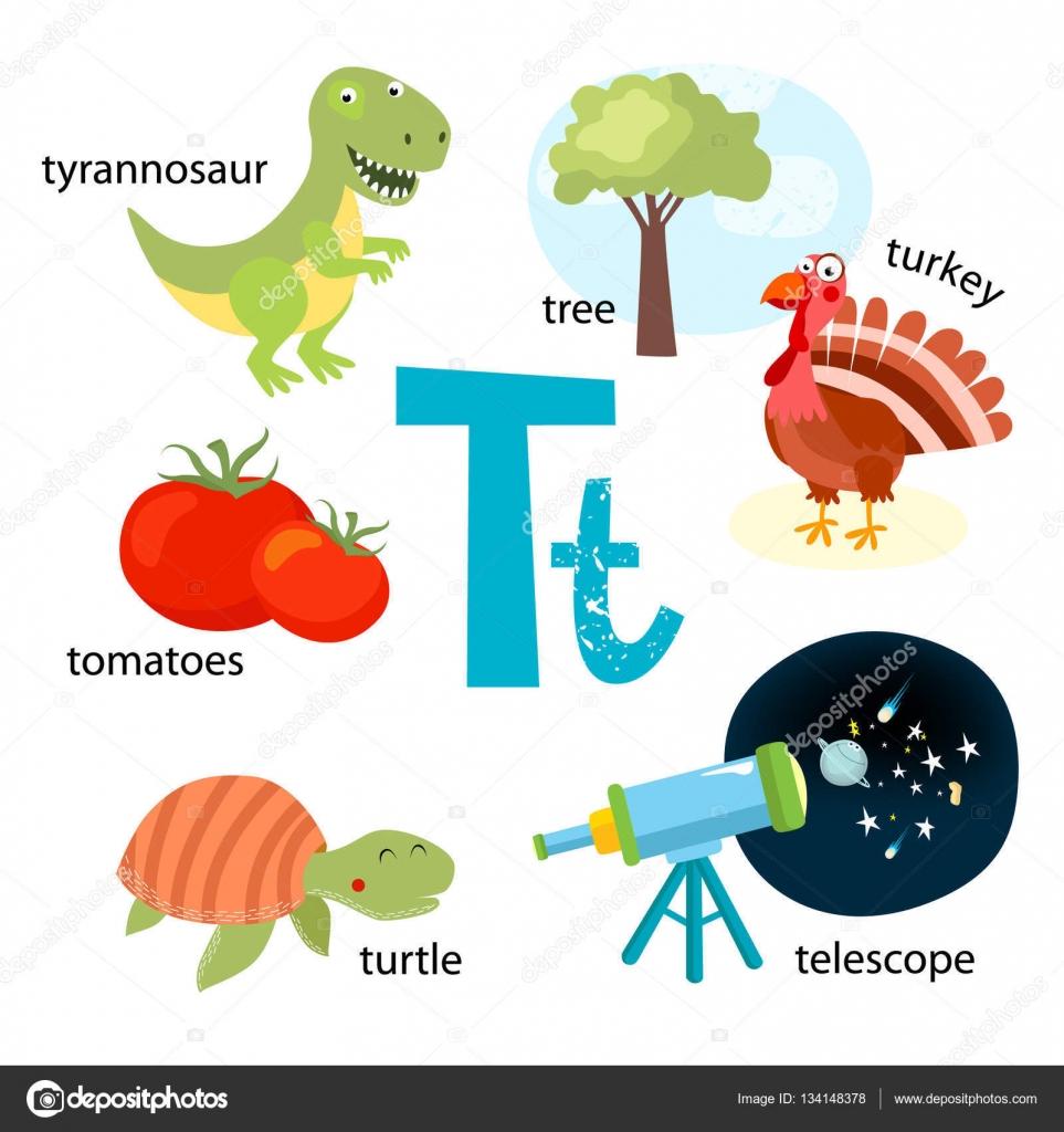 Imágenes Objetos Con La Letra T Ilustración De Vector Para