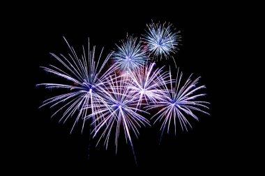 Fireworks light up in the night sky, dazzling scene.