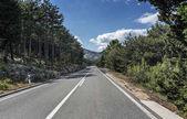 Strada campestre attraverso le montagne rocciose e la foresta