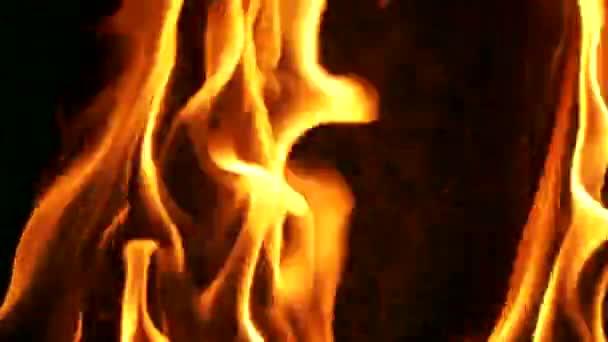 Detailní záběr z ohně spálit na černém pozadí.