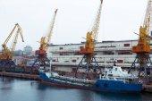 Gru di carico, porto marittimo di Odessa