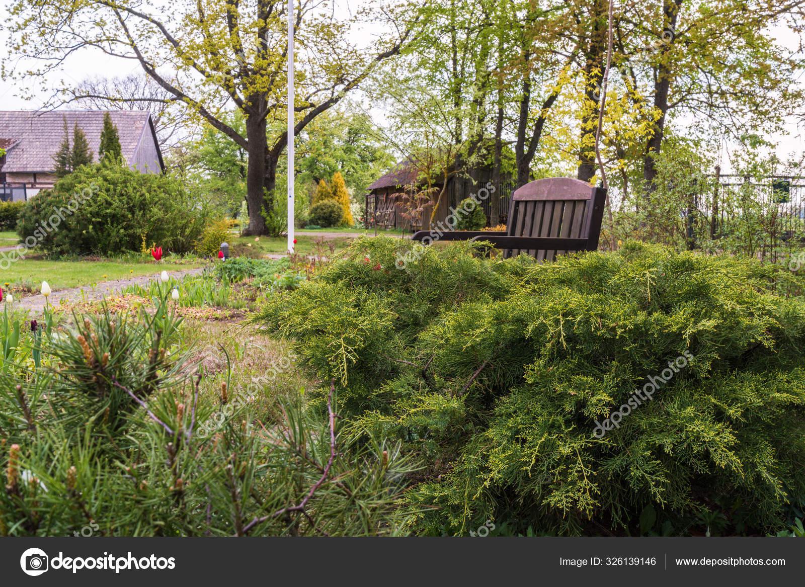 Spring Garden Part Ornamental Garden House Low Conifers Brown
