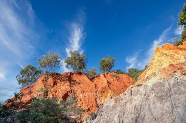 canyon of red-rock cliffs and jungle trees.