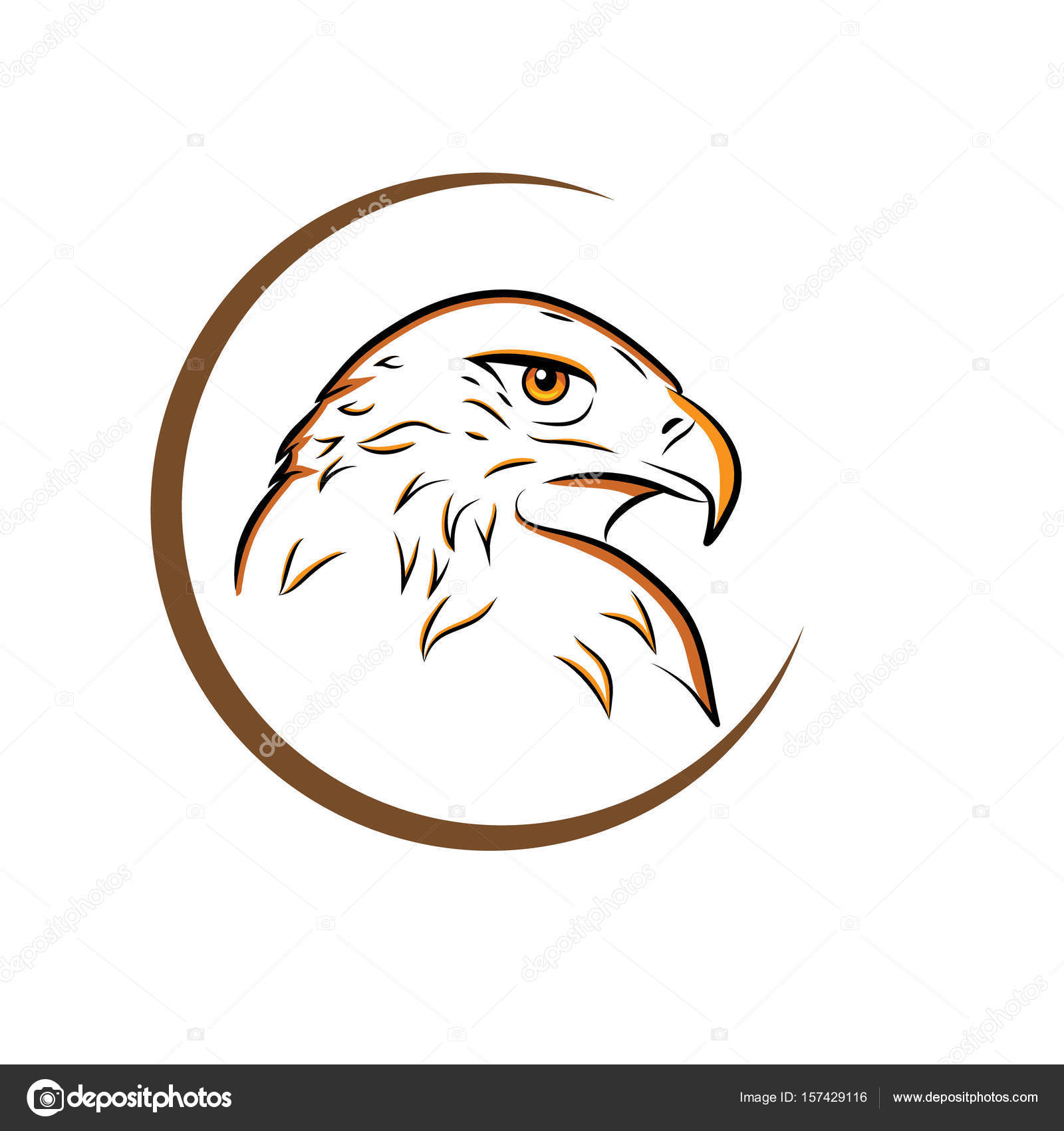 Outline of an eagle | Eagle head outline vector illustration