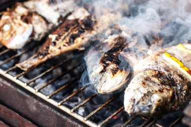 Grilled dorado with spices