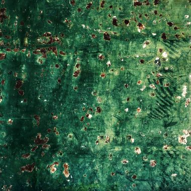 Green Rustic wood background