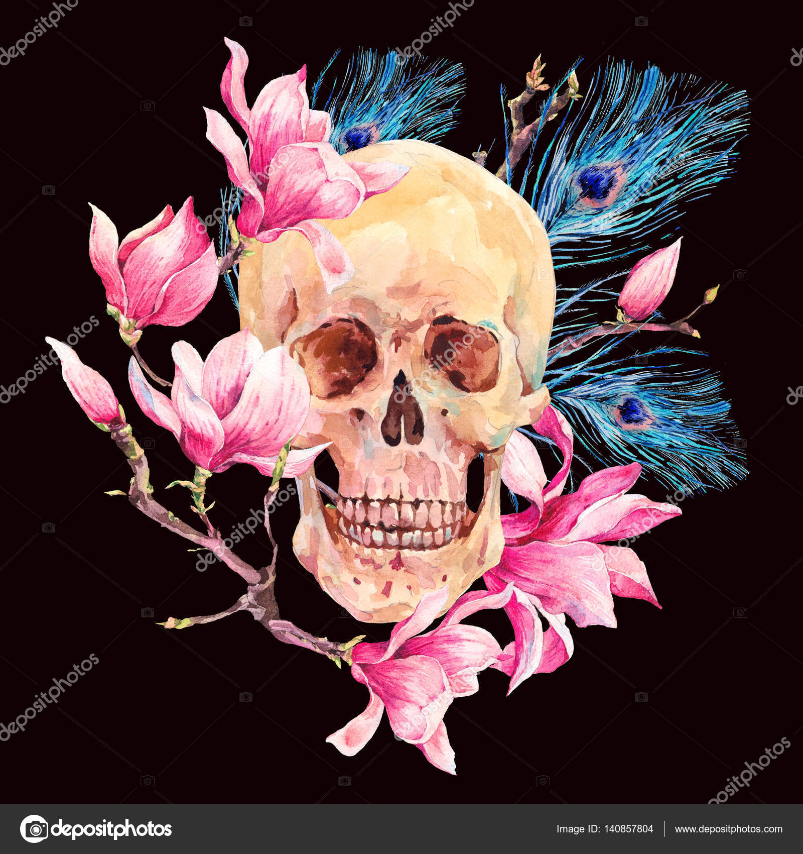 Watercolor human skull and pink flowers magnolia stock photo watercolor human skull and pink flowers magnolia stock photo mightylinksfo