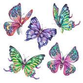 Vízfesték készlet vintage színes pillangók