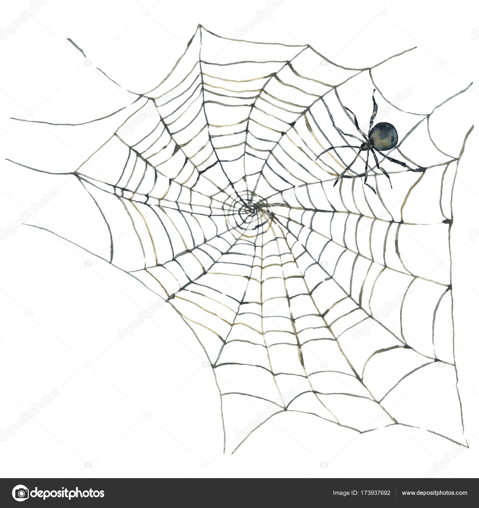 Tarjeta acuarela con araña y web — Fotos de Stock © Depiano #173937692