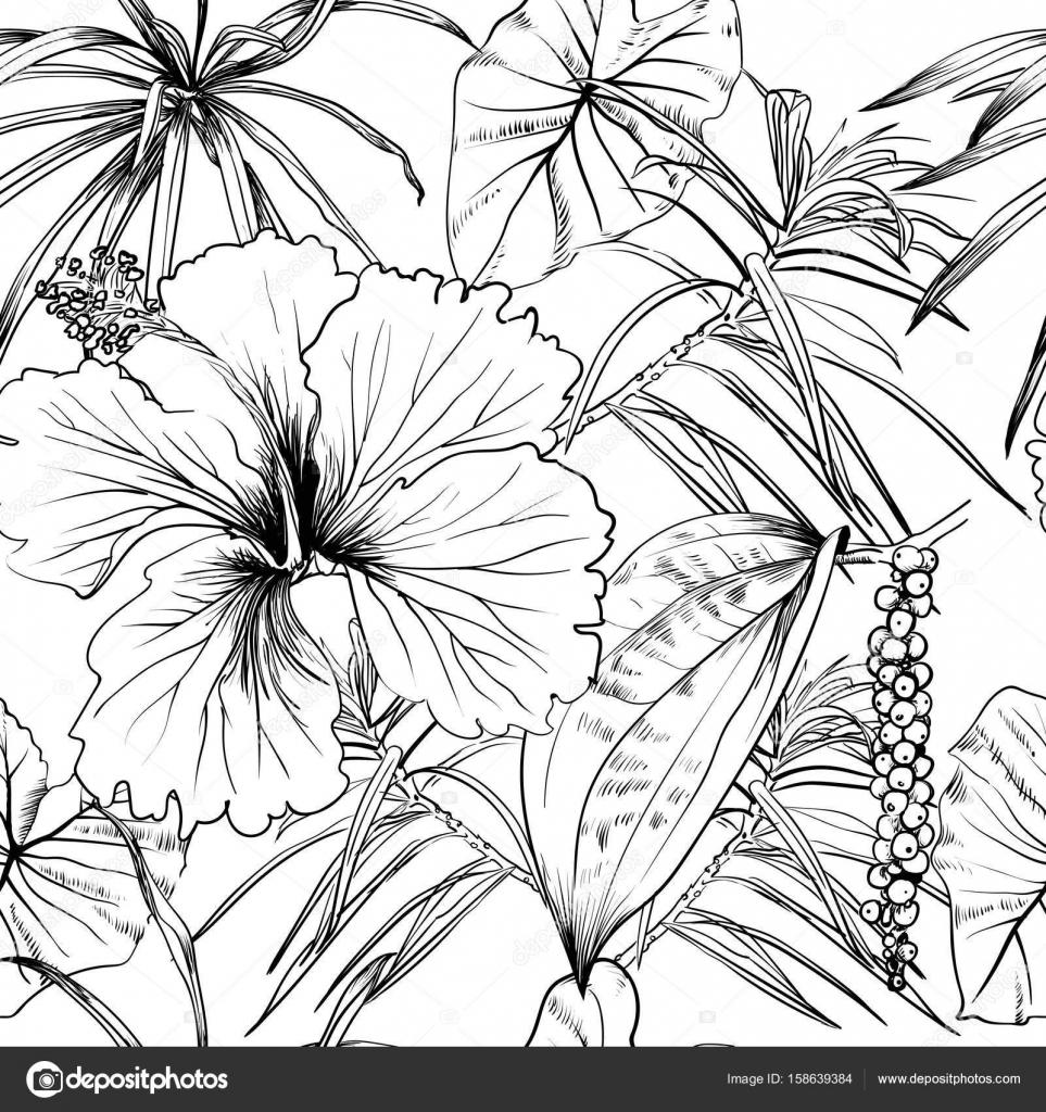 Flores exóticas tropicales y hojas. De patrones sin fisuras. libro ...