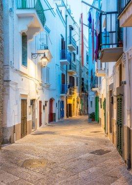 Scenic evening sight in Monopoli, Bari Province, Puglia (Apulia), southern Italy.