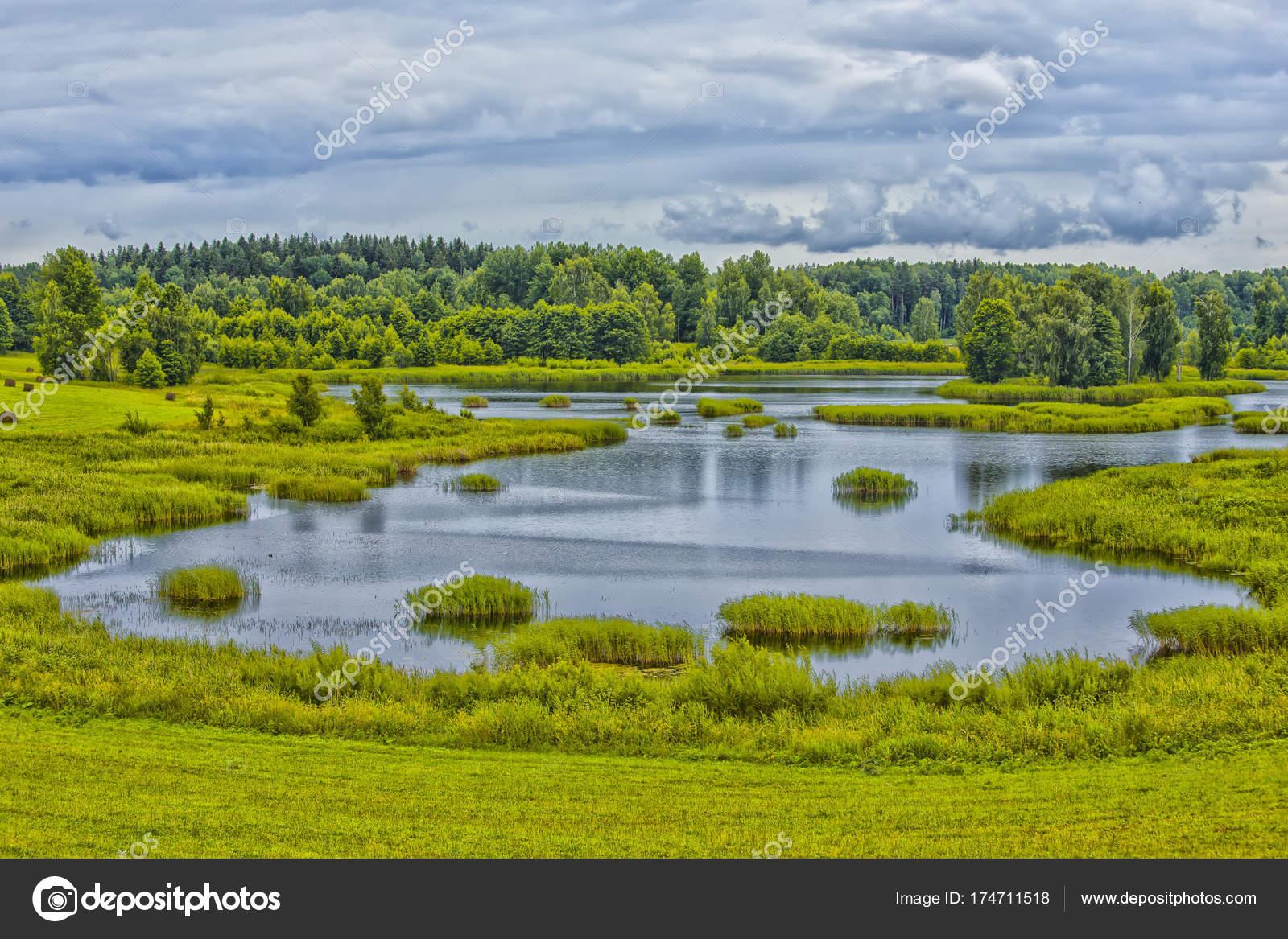 Оформить озеро на участке своими руками реально: советы по 63