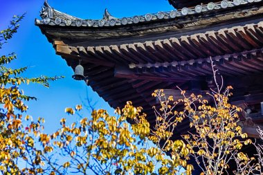 Closeup of Wings of Traditional Japanese Temple At Daytime. With Trees in Foregound. Horizontal Image