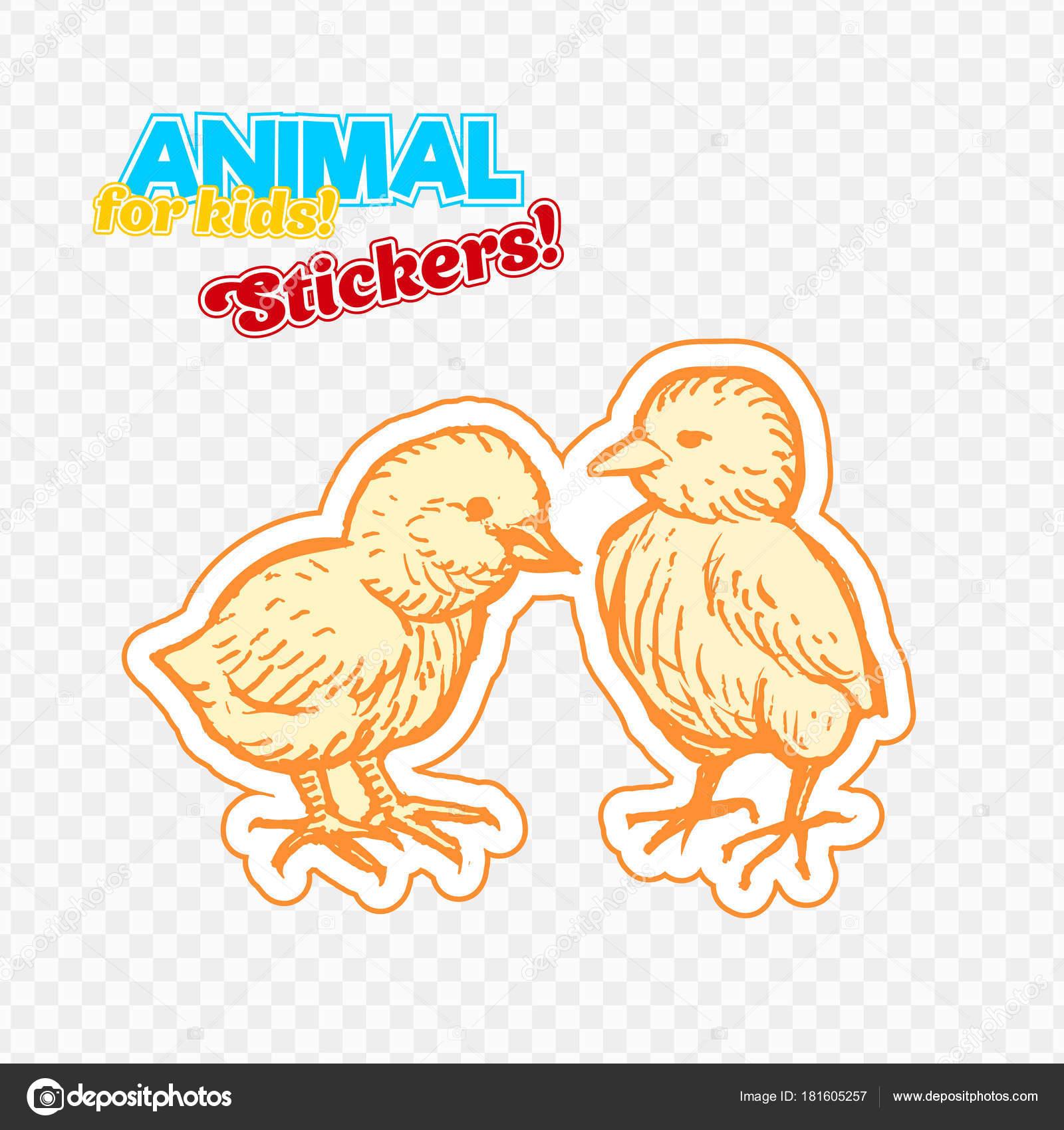 Pollo Animales Granja Estilo Boceto Etiqueta Engomada Colorida ...