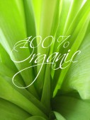 Photo Organic Sign Over Green Leaves Background.