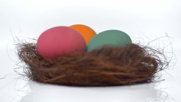 spinning nest with painted eggs on white