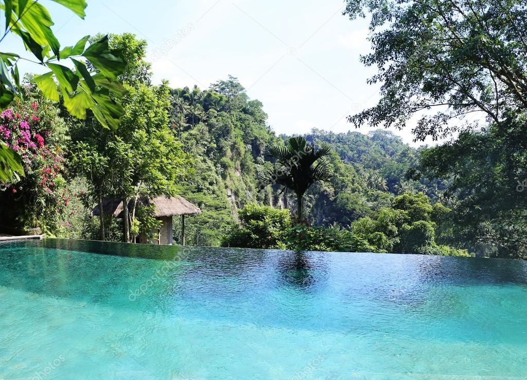 Infinity Pool In The Jungle Stock Photo 169 Apolobay
