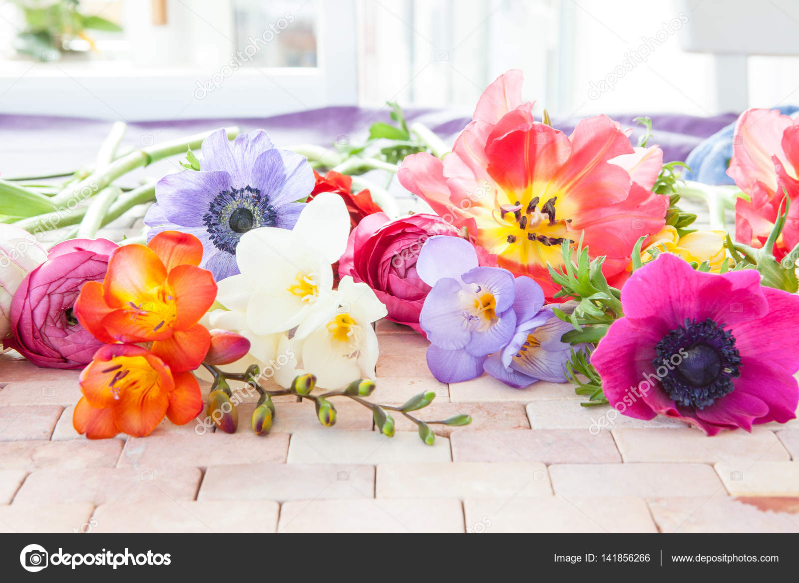 Colorful Spring Flowers Stock Photo Barbaraneveu 141856266