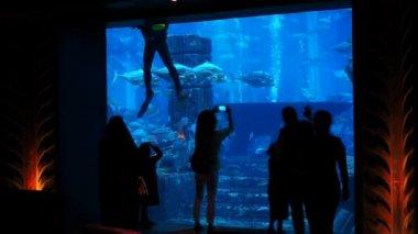 People watching big aquarium in Dubai.