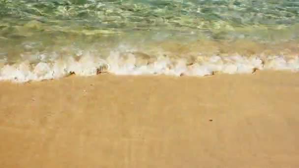 Vlny s pěnou z modrého oceánu na písečné pláži na léto